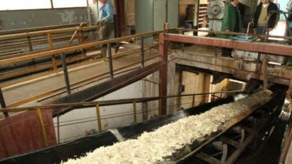Fabrica Zaharul Ludus, cumparata de cel mai mare producator din Franta