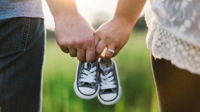 Familia traditionala vs familia moderna referat