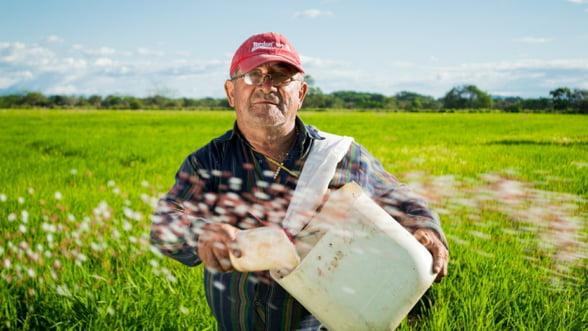 Fermierii au primit peste noapte 30 de milioane de euro. Daea: Pana joi, banii intra in conturi