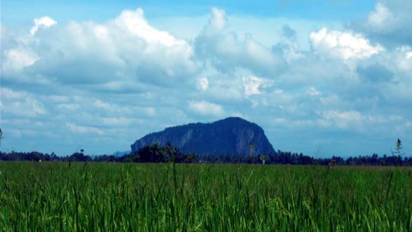 Fermierii cer modificarea subventiilor pentru anul agricol 2012