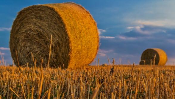 Fermierii din Germania vor primi ajutoare de stat de un miliard de euro pentru a se adapta schimbarilor climatice