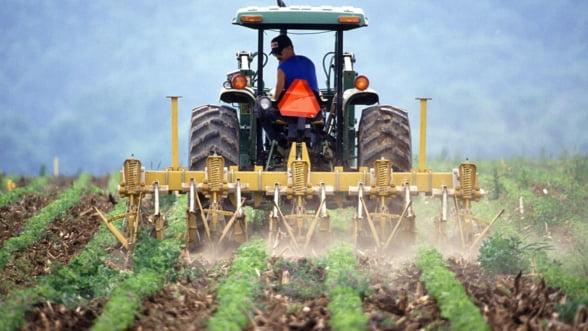 Fermierii isi pot asigura culturile agricole cu bani europeni. Fonduri disponibile de aproape 43 de milioane de euro