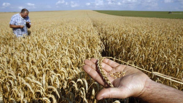 Fermierii primesc subventii de la stat, dar platesc impozite mai mari. Cu ce mai raman?