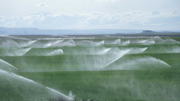 Fermierii romani pot accesa fonduri europene pentru irigatii