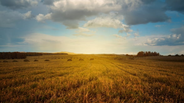 Fermierii romani vor putea accesa credite de pana la un milion de euro cu rate reduse la jumatate