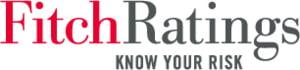 Fitch considera ca ratingurile de tara 'AAA' raman solide in contextul crizei