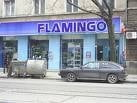Flamingo: Segmentul de LCD-uri si plasme, 250 milioane euro, in 2009