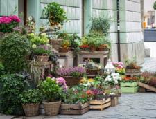 Florariile dau lovitura in acest weekend! Se asteapta vanzari de 8,4 milioane de euro