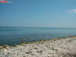 Fratii Micula vand 11 hoteluri de pe litoral