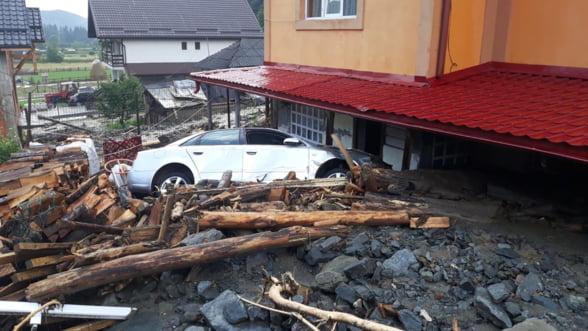 Fundatia Conservation Carpathia: In lipsa unei gestionari durabile a padurilor, dezastrele naturale cauzate de inundatii se vor inmulti