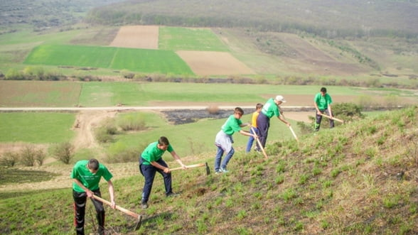 """Fundatia Mihai Eminescu Trust va ajunge in 2020 la 2.500.000 de puieti plantati in cadrul proiectului """"Plantam pentru viitor"""""""