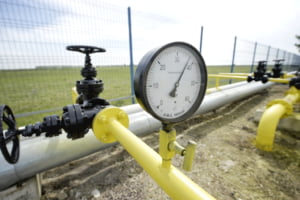 Furnizori de energie electrică şi gaze naturale, printre care Engie România, E-ON Energie, amendaţi de ANPC pentru neregulile din contracte