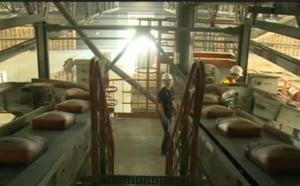 Fuziunea care il ingrijoreaza pe Chiritoiu: Foarte posibil sa vanda fabrici din Romania