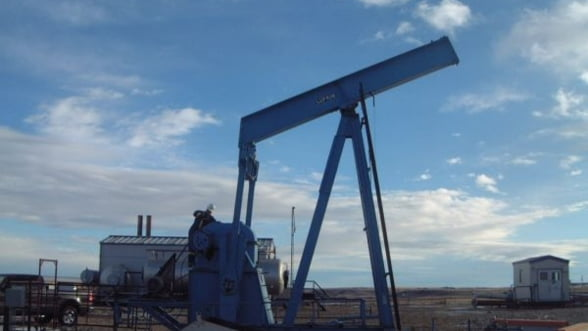 GE cumpara cu 3,3 miliarde de dolari grupul Lufkin, prezent si in Romania