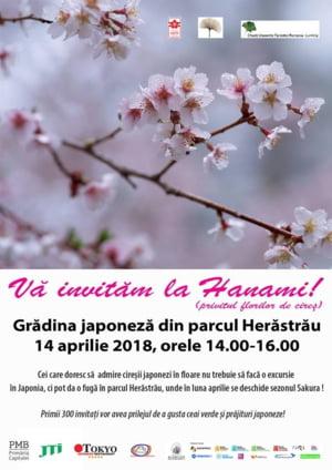 Gradina japoneza din Herastrau va fi redeschisa sambata