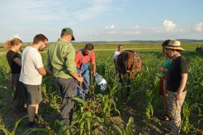 Granarul Europei in parcimonie agrara - Cateva impresii la cald si la frig