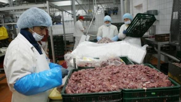 Grecii au descoperit ADN de cal in carnea de vita importata din Romania