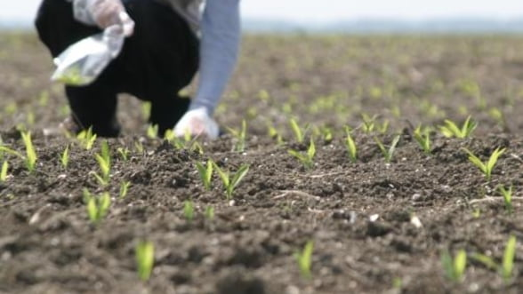 """Guvernul """"imprumuta"""" Ministerul Agriculturii cu 311 milioane de euro"""