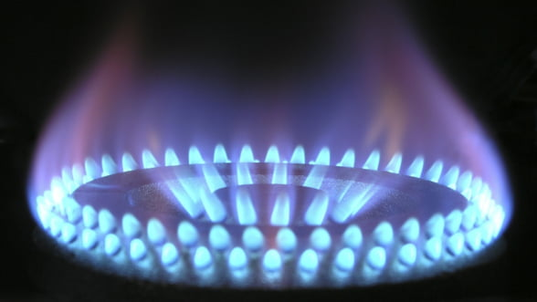 Guvernul a plafonat pretul gazelor doar pentru consumatorii casnici, nu si pentru cei industriali