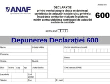 Guvernul mai da o OUG pe Declaratia 600 pentru a clarifica situatia asiguratilor
