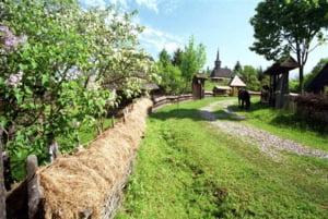 Guvernul vrea sa redirectioneze fondurile alocate pentru Dezvoltarea Rurala