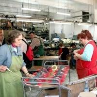 IMM-urile nu declara falimentul pana nu vine statul cu sechestrul