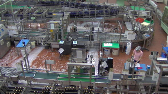 INS: Productia industriala, in crestere cu 2% in ianuarie