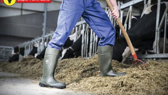 Igiena stricta in ferme asigura productie de calitate