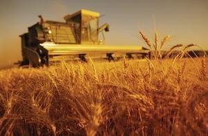 Impozite mai mici in Agricultura?