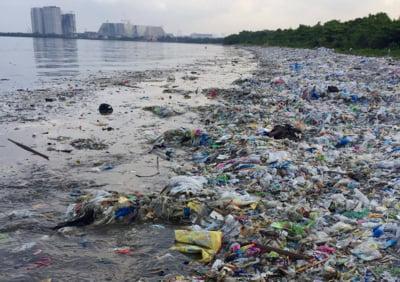 In anul 2050, va fi mai mult plastic in oceane decat peste. Salvarea ar putea veni de la banalele pungi biodegradabile