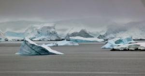 Incalzirea climatica produce un fenomen ciudat: Antarctica va fi un loc mult mai verde