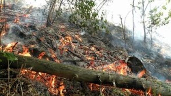 Incendiul izbucnit in Bucegi s-a extins, fiind vizibil din statiunile de pe Valea Prahovei