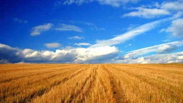 Industria alimentara contribuie cu 8% la PIB-ul Romaniei