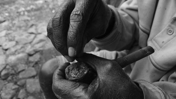 Industria tutunului - Afla cine a descoperit aceasta planta si cine a fumat prima data!