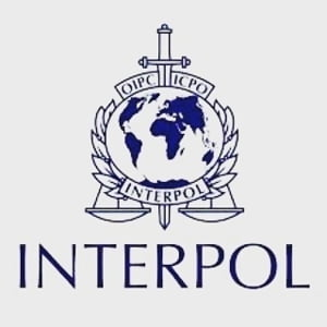 Interpolul n-are ce face si trebuie sa accepte demisia sefului sau retinut in China