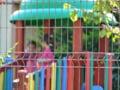 Invatamantul obligatoriu a fost extins la 15 clase: In Bucuresti, e deficit de 7.000 de locuri la gradinita si nici educatoarele nu sunt destule
