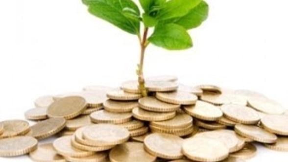 Investitiile straine nu au contribuit semnificativ la economia Romaniei