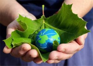 Investitorii in energia verde trec pe la CCIB