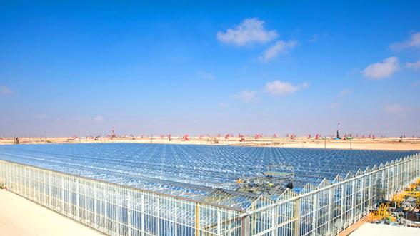 Ironie maxima: Energia solara, folosita la extragerea petrolului