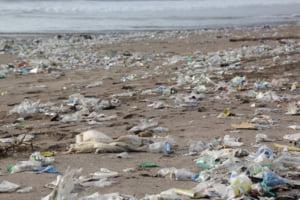Lectia australiana: Ce s-a intamplat dupa ce doua mari supermarketuri au interzis pungile din plastic