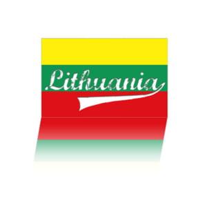 Lituania ar putea importa energie electrica din Ucraina, prin Belarus
