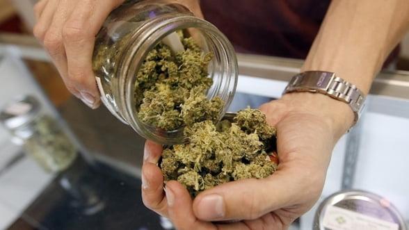 """Locuitorii Washingtonului au spus """"da"""" pentru legalizarea consumului de canabis"""