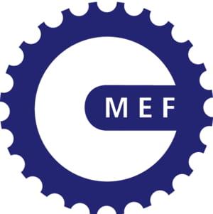 MEF: Beneficiarii de fonduri UE vor trebui sa ofere date despre stadiul de realizare a proiectelor