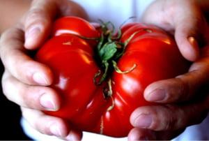 Magazinele ar putea fi obligate sa doneze alimentele nevandute Interviu