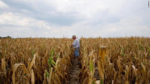Mai mult de jumatate dintre fermierii romani lucreaza pamantul cu sapa - federatie
