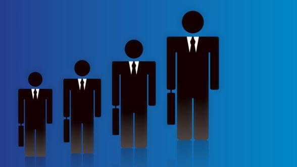 Management privat: Statul reia procesul de selectie pentru marile companii