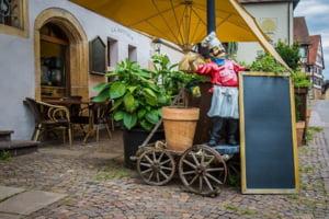 Masuri de relaxare in lume: Barurile s-au redeschis in Finlanda si Norvegia, cafenelele si restaurantele in Olanda