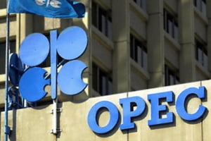 Membrii OPEC cer stoparea supraproductiei de petrol