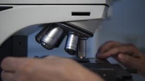 Microparticule de plastic au fost gasite de cercetatori in toate tesuturile umane studiate