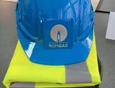 Ministerul Economiei vrea sa schimbe Consiliul de Administratie al Romgaz